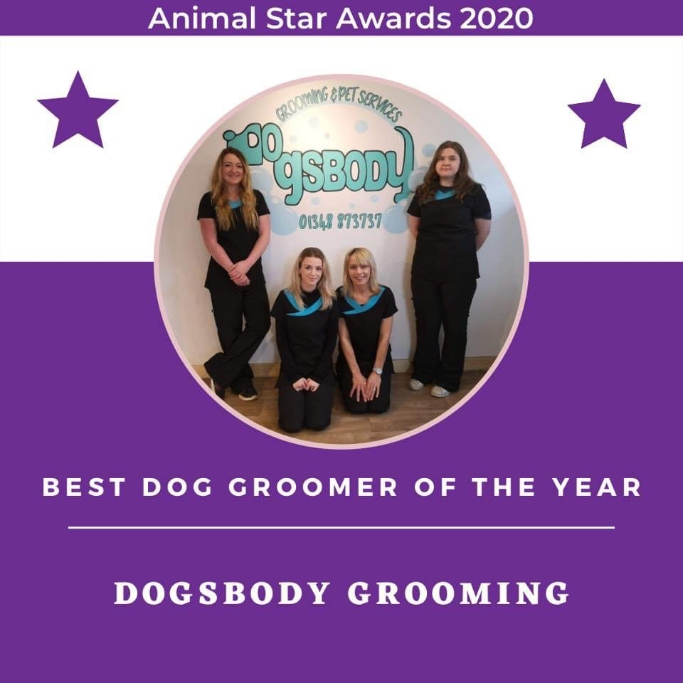 Animal Star Awards 2020 - Best Dog Groomer of the Year - Dogsbody Grooming